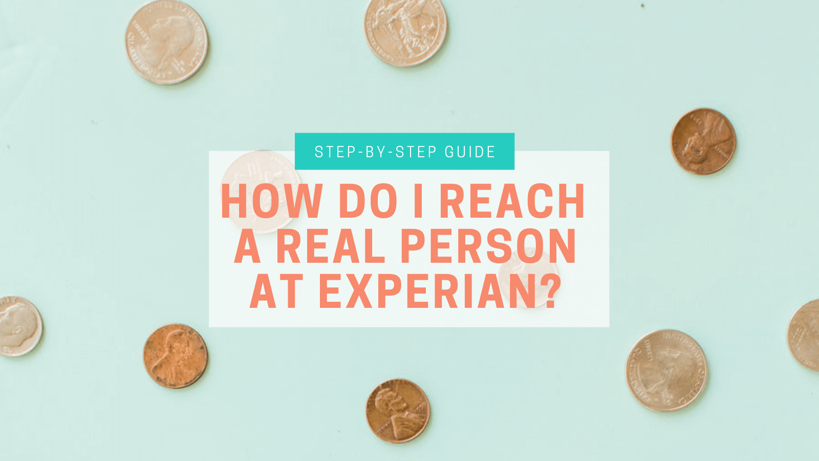 How Do I Reach A Real Person At Experian Amy Northard Cpa The Accountant For Creatives